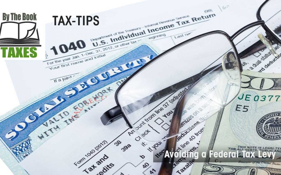 Avoiding a Federal Tax Levy